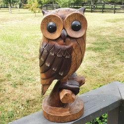Large Owl Power Animal Statue - Hand carved